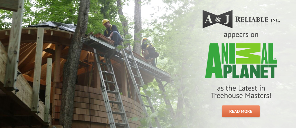 treehouse-masters-banner
