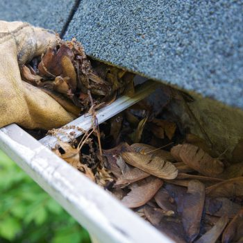 Gutter cleaning services in New York and New Jersey.